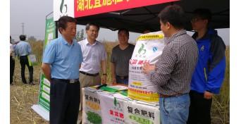 望江县油菜绿色高效发展现场观摩会-油菜专用缓释肥介绍